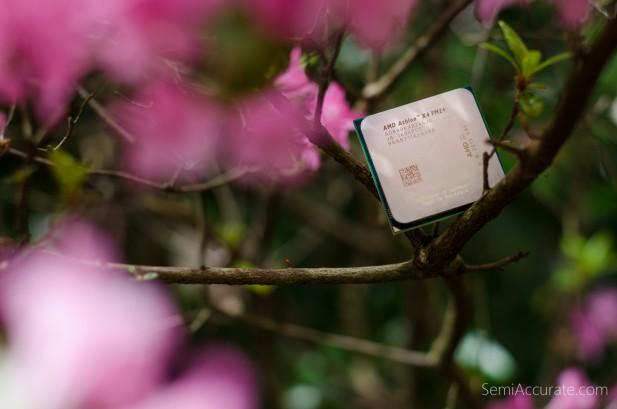 AMD 880K